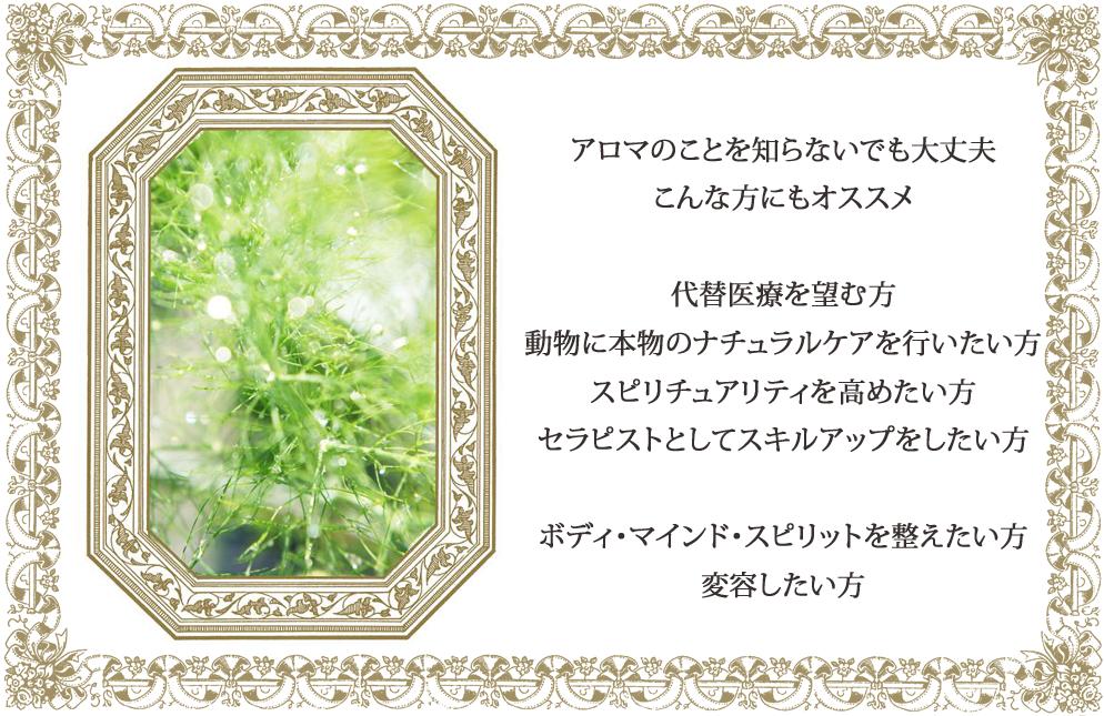 hajimetekouza3